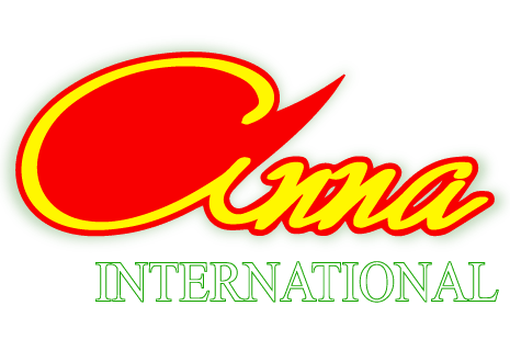 logo Anna International
