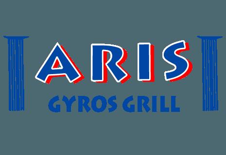 pita gyros gießen