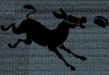 Bei Chidonkey bestellen